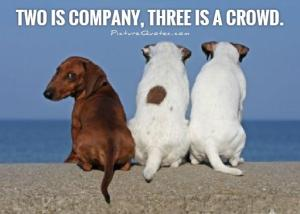two-is-company-three-is-a-crowd-quote-1